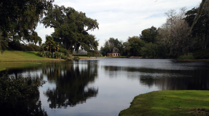 Things to do Around Charleston: Middleton Place Plantation